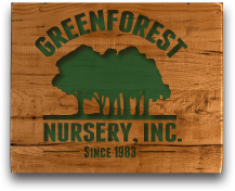 Green Forest Nursery, Inc.